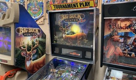 Big Buck Hunter Pinball Machine $8995