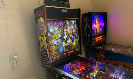 Elvira and the Party Monsters Pinball $8500